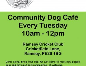 Community Dog Cafe