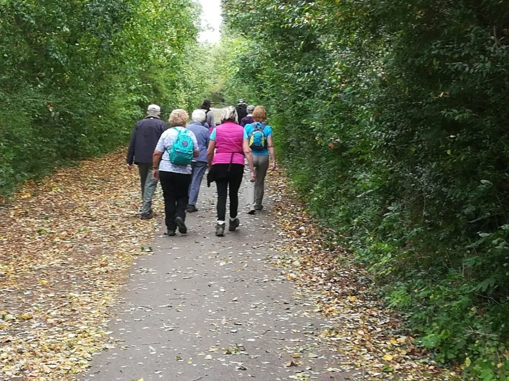 Great Fen Walking Group - walk at Grafham Water